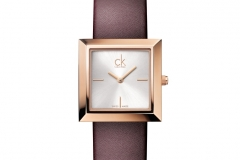 SS13_ckwatch_Mark_brown_EUR_235_001