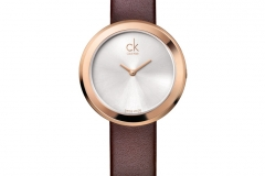 SS13_ckwatch_firm_brown_EUR_235