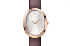 SS13_ckwatch_incentive_brown_EUR_235