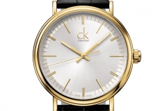 SS13_ckwatch_surround_gold_EUR_280