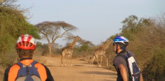 WORLD CYCLING AFRICA