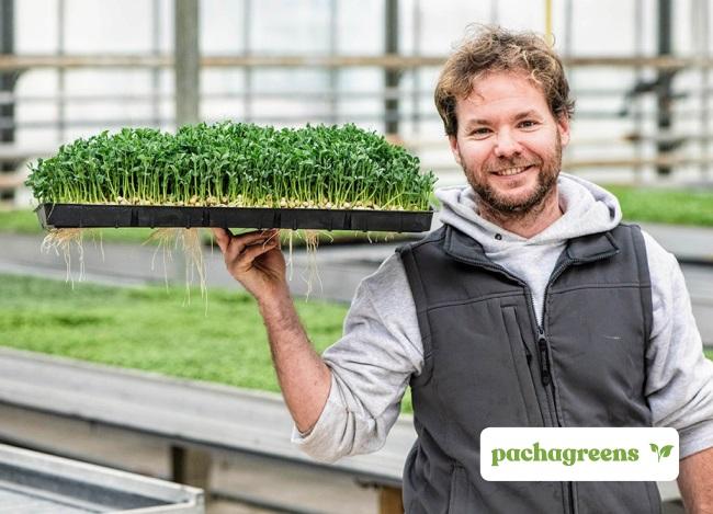 BELGIUM ENVIRONMENT PachaGreens SENSE FUTURE GENERATIONS FOUNDATION SEnSE Pachagreens