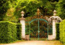 INTUITIVE HEALING GATEWAY