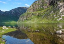 EUROPEAN ENVIRONMENT WETLANDS Wetlands International – Europe